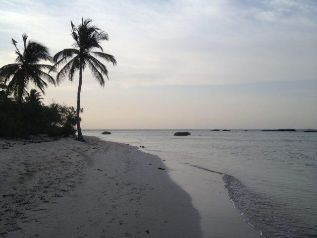 Serenité au bord de l'eau